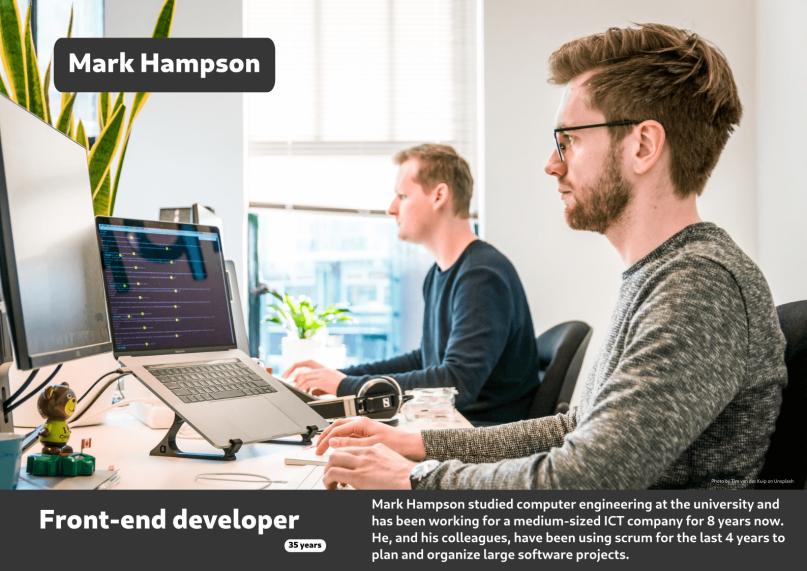 User persona of a web developer